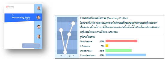 DISC profile result.png